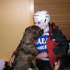 dog kissing a pig?  In a hockey helmet?