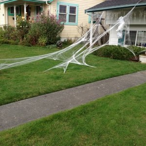 Some of our 'den of spiders' decor on the house a couple days before Halloween. My mother's web-weaving skills are exceptional.