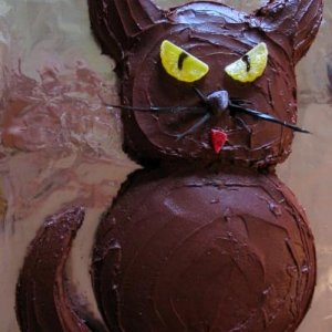 Chocolate Cat Cake