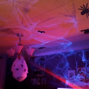 spiders lair 2014