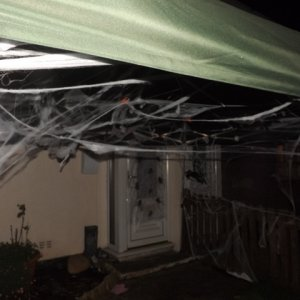 the old gazebo in garden covered in web and spiders 2014