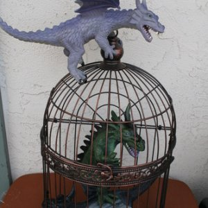 caged dragons for printersdevil