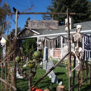 Welcome to Evil Vines Cemetery, Napa, CA!