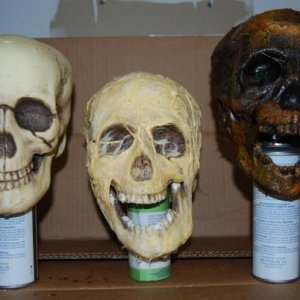 skulls - Frist skull is store stock, 2nd skull is skull 02, 3rd skull finish skull (first try at corpsing skull)
