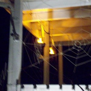 Blurry shot of the spiderwebs and torches on the deck..