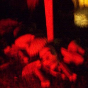 Blurry shot of the 'pile 'O bones' at the Reaper's feet...