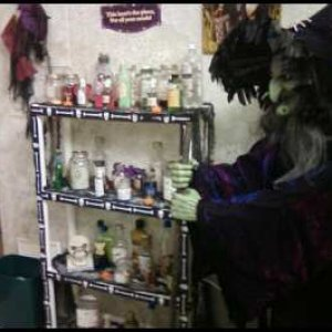 Witch Kitchen - shelves with over 50 potions
