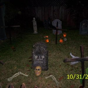Halloween Day and Night 2008 057