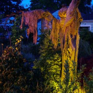 The Scarecrow beckons trick-or-treaters from the street.