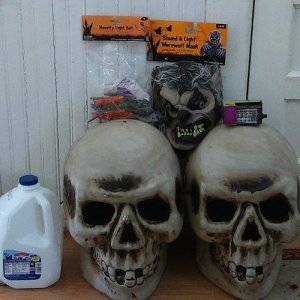 Giant lighted blow mold skulls, Walgreens clearance 2014