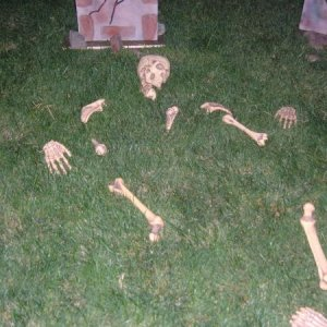 Bag of bones spread out on one grave.
