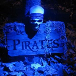 "Handmade ""Beware of Pirates"" sign covered with Spanish moss and adorned with latex skull. Lit with Minion Web's blue 18 LED spot light."