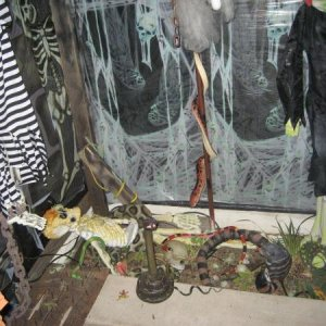 "The Snake pit under a spinning Dead Fred and the wall hanging prisoner.  The ""standing"" snake strikes out at visitors."