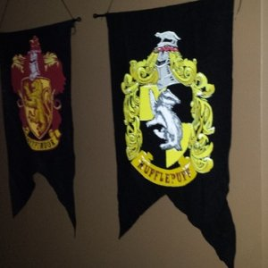 All four houses of Hogwart's were represented