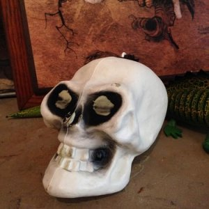 Blowmold Skull with hanging string