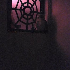False stained glass window I made from card, cellophane and duct tape.