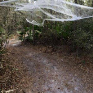 Haunted Trail 2015