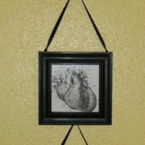 Anatomy pics printed out and framed.