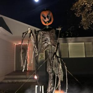 How the trick-or-treaters saw him.