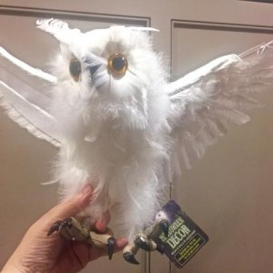 28inch White Owl . Comes boxed with separate wings and tail that are velcro'd. Great for storage that you can take him apart. Photo here shows one win