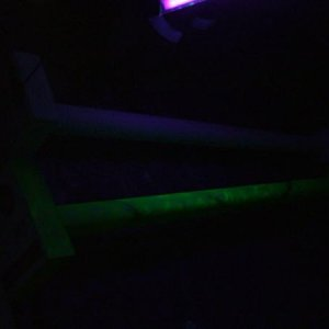 Column under blacklight