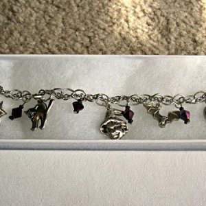 The charm bracelet I made as a gift for my witch party.