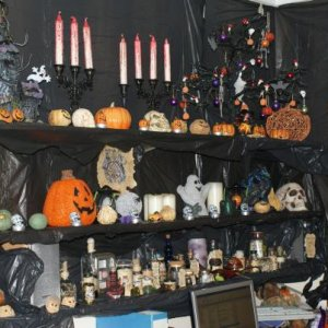 2009 witchy shelves