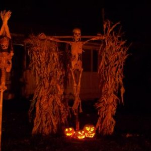 cruxified corpse.  The pumpkins are lighted by christmas style lights that pulse on and off, giving a decent effect