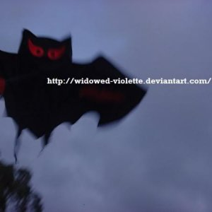 When I was planning my New Moon dvd release party this year I took some time out to go fly a kite...a bat kite! :D By the way it's blurry because the