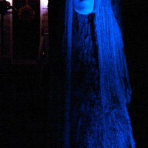 Since La Llorona is to haunt near water I light it with blue light.  Using all off white colors it has a uniform color when lit.  If the comment heard