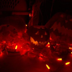both pumpkins and leaves lit up