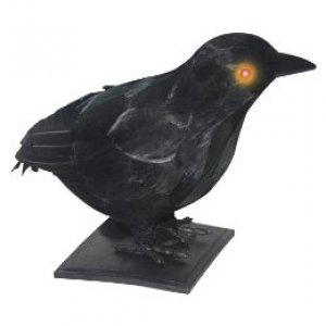 "I would love this 10""Realstc Crow w LtUp Eyes&Sound from Target."