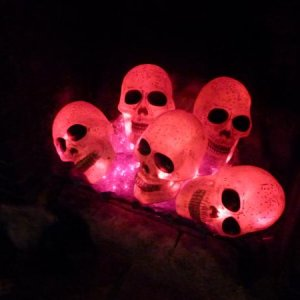 Skulls in the fireplace