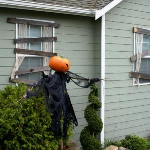 Scare Crow and both windows set for the night.