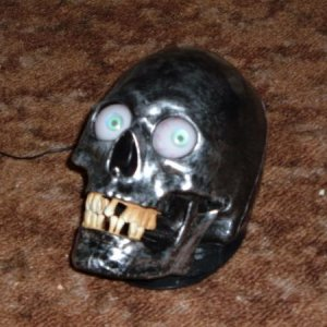 Singing Skull with light up eyes and they move side to side, he sings - Why does it feel like somebody's watching me....50% off sale today at Walmart.