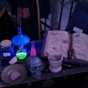 Glow in the dark potions and spell book.