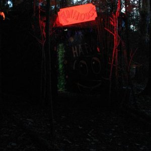 The funhouse, small maze with strob lights and lots of hanging spiders. When you come out of the other end the air canon is waiting to scare the crap