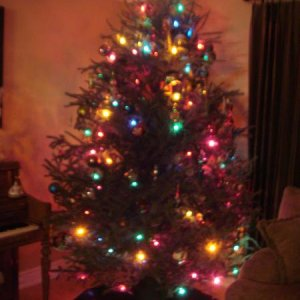 We go old school with our tree.  C7 lights and vintage ornaments some years we even do tinsel :)