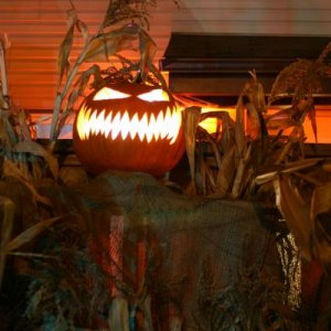 closer shot of pumpkin king...you couldn't actually see through him walking up to him as you can in the pictures