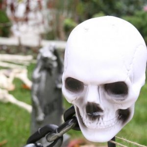Dollarama skull on a stick...made into a 'fence' for the very tiny  townhome cemetary with the help of dollarama chain