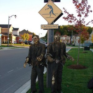 Zombies Crossing 753370