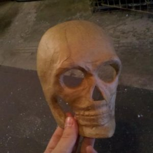 bought this papermache skull at a craft store for 99 cents, bought 10 of them, the possiblities are endless!