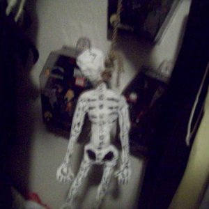 Skeleton in the closet back