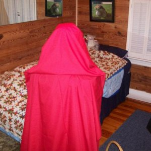Red Riding Hood - this is the view folks had when walking to the bathroom (except with lights on)