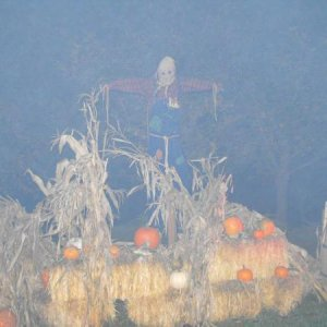 Hazy Decorations in Scarywood