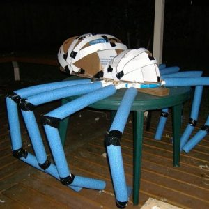 Paper maché and pvc and pool noodles to build giant spider body. I am going to remake the legs in 2011 out of pvc all the way since the pool noodles w
