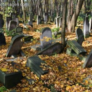Dilapidated old gravestones at the Jewish Cemetery (Cmentarz Zydowski)