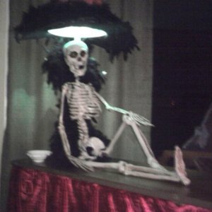 Skele sitting atop the piano listening to the music.