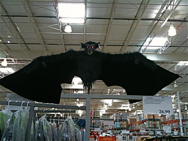 Costco Indoor Outdoor Bat With Read Light Up Eyes 8 Foot